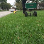 Jacksonville Lawn Service & Fertilization