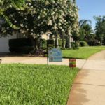 Lawn care and fertilization services